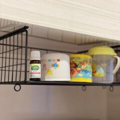 便秘改善/乳酸菌/赤ちゃん用品/赤ちゃんのいる暮らし/赤ちゃんのいる生活/カルチュレル 世界No1売上の乳酸菌サプリメントブラン…(2枚目)