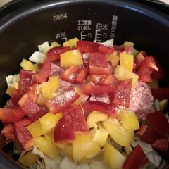 回鍋肉風/キャベツ/炊き込みご飯/変わり種レシピ/簡単/ラク家事 野菜嫌いの同居人さんのための作り置き🙋…