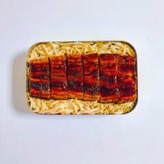 アルミ弁当/うな重弁当/みんなのお弁当/肉なし弁当/お弁当/おべんとう/... ⌘本日のお弁当⌘2019.06.13⌘ …