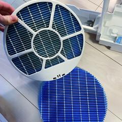 SHARP シャープ 加湿空気清浄機 交換用 加湿フィルター 純正品 FZ-Y80MF | シャープ(空気清浄機交換フィルター)を使ったクチコミ「4年ほど使っていた空気清浄機の加湿フィル…」(1枚目)