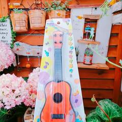 紫陽花/多肉植物/寄せ植え_華/寄せ植え/寄植え/ギター/... 今日の多肉ちゃん🌿&今日の薔薇🌹  この…(3枚目)