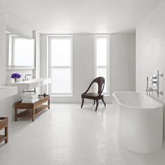 ホテル/ロンドン/イアン・シュレーガー/シンプル/タイル ペントハウスの広々としたバスルーム。アー…