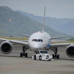 B787/広島空港/航空写真/ANA/空港/穴場スポット 広島空港穴場スポットから ANA B787