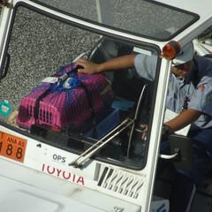 ANA/グランドハンドリング/羽田/空港/グラハン/航空貨物/... ペットってこんな風に運んでくれるんだ…優…