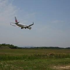 飛行機/空港/風景/航空写真/広島空港 japan airlines B737-…