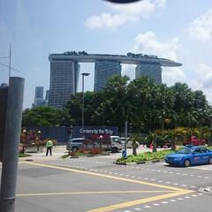 シンガポール/マリーナベイサンンズ マリーナベイサンンズ別角度から バスの車…