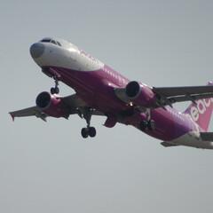 レードーム/関西空港/関空/ピーチアビエーション/peach/飛行機/... あの・・・つかぬことお伺いしますが、鼻は…