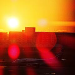 福岡空港/夕方/夕焼け/空港/展望デッキ 夕焼けの福岡空港 よく見るとANAのB7…