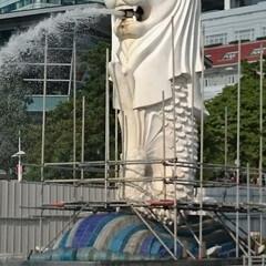シンガポール/マーライオン マーライオン