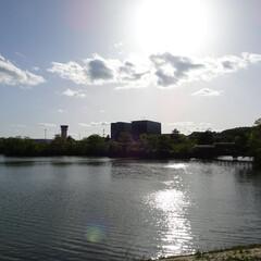 用倉新池/広島空港/夕方/水面に映る太陽 用倉新池 広島空港となり 夕方の何気ない…