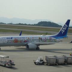 広島空港/航空写真/フラワージェット/空港風景/空港/飛行機 ANA B737-800 特別塗装機 フ…