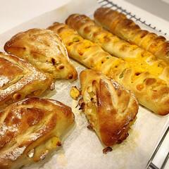 手ごねパン/枝豆とチーズパン/ナッツとパインとホワイトチョコパン/枝豆/チーズ/カリカリ/... 自分で作った2種類の手ごねパン 枝豆とチ…(1枚目)