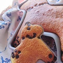 ベランピング/ベランダキャンプ/手作りおやつ/おうちごはん/簡単/おしゃれ/... stayhome ふわふわケーキでおうち…