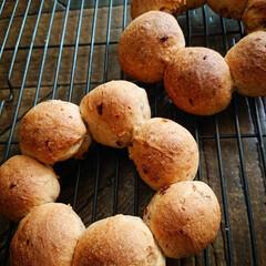 盛り付け/生活の知恵/おうちごはん/セリア/ランチ/簡単/... シンプルパンを焼いた時は 盛り付け工夫で…(2枚目)