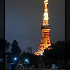 東京タワー/おでかけワンショット 👫×🗼