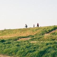 平成最後の一枚 日曜の昼下がり、河川敷を散歩していた時の…