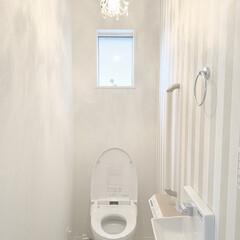 シャンデリア ミニシャンデリア ガラスビーズ ホワイト 北欧 おしゃれ LED対応 アンティーク 276WH(シャンデリア)を使ったクチコミ「1Fトイレです。 プチシャンデリアがお気…」