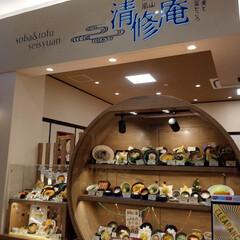 買い出し/きつねうどん/ネギトロ丼/天丼/イオンモール/水前寺清子さん 今日は、イオンへ買い出し💨 ランチはイオ…