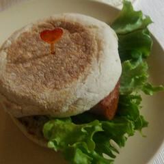 お昼ごはん/辛子マヨネーズ和え/イングリッシュマフィン/あらびきハムステーキ/いただきます らんちー🎵 イングリッシュマフィン あら…