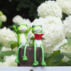 相模原北公園/紫陽花/カエル/梅雨/雨季ウキフォト投稿キャンペーン 相模原北公園に行ったときの一枚です。