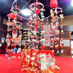 ピンク/雛祭り/お雛さま/つるし雛 つるし雛はたくさんのお人形を作って吊るし…