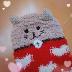 可愛い/靴下/暖炉風/セラミックヒーター/雑貨 猫ちゃん靴下(=^_^=)ニャー♪ 娘か…