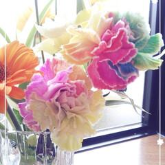 母の日/お花/令和の一枚/はじめてフォト投稿/至福のひととき/暮らし レインボーカーネーショ~ン♡  レインボ…