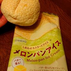 おやつタイム メロンパンアイス 冷たいメロンパンみたい…(1枚目)