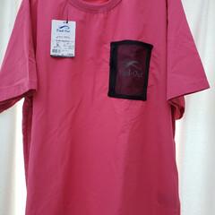 ピンク/Tシャツ/ワークマン女子/ワークマン+/暮らし サラサラ感がたまらんよ😁 今日はワークマ…