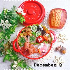 飾り切り/りんご/トナカイ/女子高生弁当/娘弁当/クリスマス2019/... 今日の娘弁当です🥰