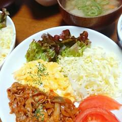 夜ごはん/ひじきの煮物/ごぼう/ポークチャップ/おうちごはん/limiaキッチン同好会 今日の夜ご飯は ポークチャップです😃
