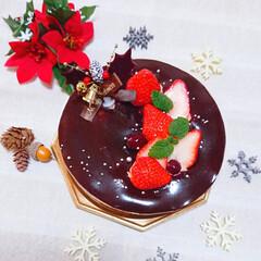 手作りケーキ/おめでとう/息子誕生日/プリンタルト/チョコムースケーキ/誕生日ケーキ/... 今年のクリスマスは チョコムースケーキと…