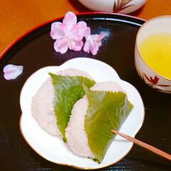 手作りお菓子/手作り和菓子/和菓子/おうちカフェ/桜餅/こどもの日 こどもの日に柏餅じゃなく 桜餅作りました…(2枚目)