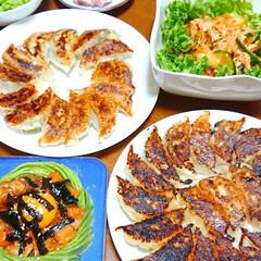 餃子/お酒がすすむ/お酒好き/ニンニク料理/キムチ/海鮮ユッケ/... 本日の夜ご飯です❤️ 手作り餃子 海鮮ユ…(2枚目)