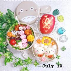 お昼ごはん/りんご飾り切り/お弁当/手作り弁当/夏弁当/しろくま/... 今日の娘のお弁当です😃