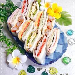 夏のごはん/サンドイッチ/置き弁/作り置き/令和の一枚/フォロー大歓迎/... 今日の子供たちのお昼ごはんです😃