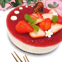 母の日ケーキ/母の日スイーツ/苺ケーキ/ホワイトチョコムース/苺のレアチーズケーキ/デコレーションケーキ/... 母の日スイーツ作りました🍓 ホワイトチョ…