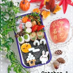 飾り切り/竹輪きゅうり/りんご飾り切り/ヤングコーン肉巻き/はんぺん焼き/お月見/... おはようございます😊 1ヶ月ぶりの娘弁当…