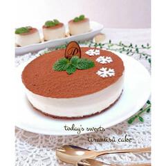 手作りお菓子/手作りケーキ/お菓子作り/ティラミス/ティラミスケーキ/バレンタイン2020 ティラミスケーキ作りました💞