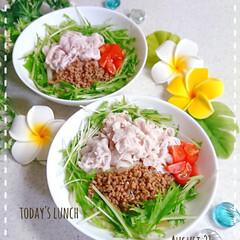 夏休みごはん/サラダうどん/冷やしうどん/置き弁/作り置き/フォロー大歓迎/... 今日の子供たちのお昼ごはんです😃