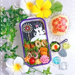 女の子弁当/ランチ/お弁当作り/お昼ごはん/りんご飾り切り/はんぺんアート/... 今日の娘弁当🥰😊🍀
