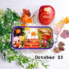 手作り弁当/ランチ/お昼ごはん/お弁当/りんご飾り切り/秋弁当/... 今日の娘弁当です❤️
