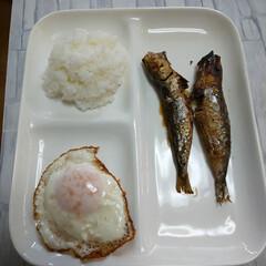 ランチ/食べ物/昼御飯/ご飯/暮らし/感謝/... 贅沢はしない、これで満足😅文句なし🤐