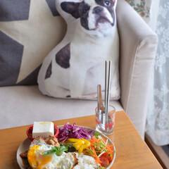 昼ごはん/ワンプレート/エスニック料理/令和の一枚/フォロー大歓迎/LIMIAファンクラブ/... いつかのお昼ごはん。  ベランダ菜園のバ…