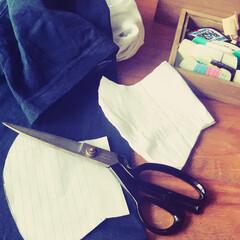 片付け/洋服の整理/丁寧に暮らす/シンプルライフ/家時間/お裁縫/... ※効果や影響、問題点等は全く不明なので …