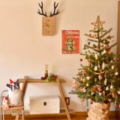 二人暮らし/転勤族/賃貸インテリア/リビング/クリスマスインテリア/クリスマスツリー/... 掃除が苦手なので 基本的にあまり「飾るこ…