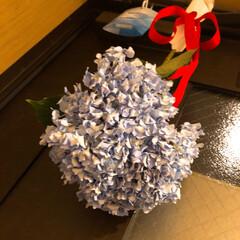 玄関/花/お花のある暮らし/風水/紫陽花/暮らし 6月10日は紫陽花を逆さにして玄関に吊す…