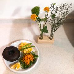 ZERO JAPAN カフェプレートL CFZ-08 WH・ホワイト   ZERO JAPAN(皿)を使ったクチコミ「朝ごはんの記録  チョコベーグル オムレ…」(1枚目)