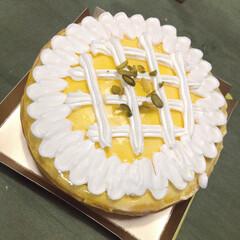 ケーキ/おやつ/レモンパイ/パイ/テイクアウト/おうちごはん テイクアウト  ひまわりのレモンパイ🌻 …