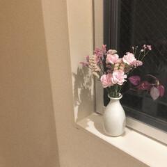 暮らし/bloomeelife/お花のある暮らし/花瓶/100均/節約/... 今週のお花  花瓶はSeriaで売ってた…